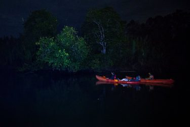 Night cruise along the Abatan Riven. Photo courtesy of Julia Wimmerlin.